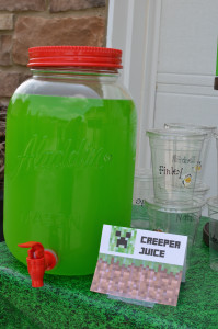 Video Game Party: Creeper Juice