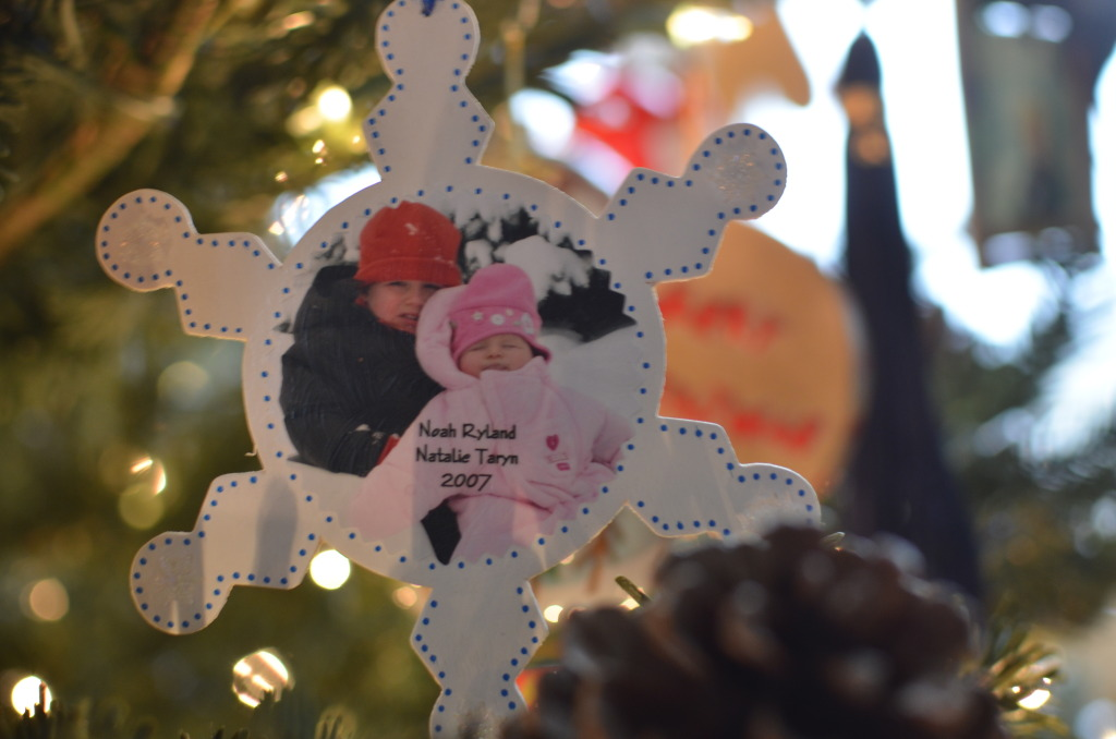 Snowflake Picture Ornament